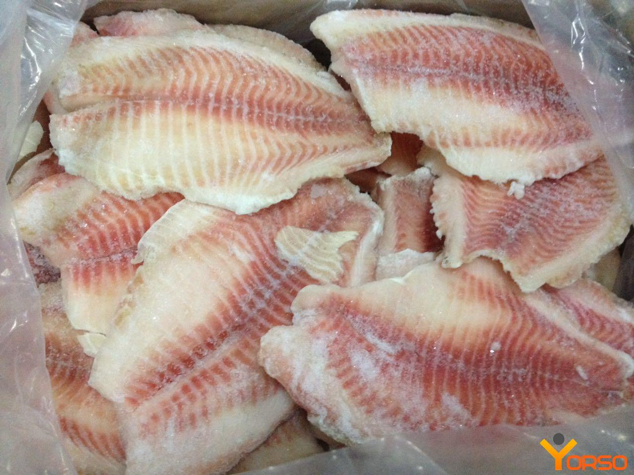 Nile Tilapia Frozen Fillet 5 7 5