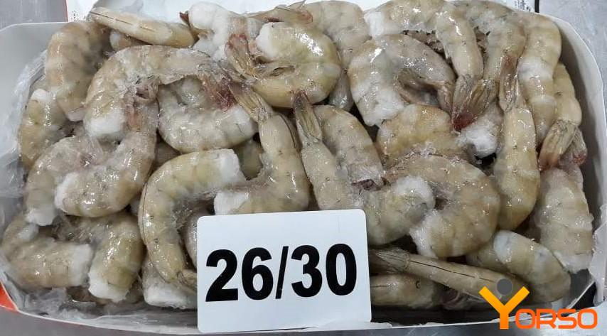 Fresh frozen shrimps PUD; P&D
