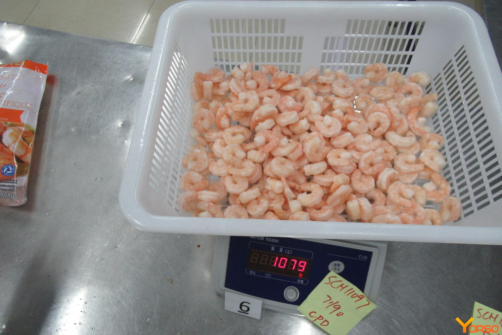 Shrimp Edulis, PD, 41/50, 1/10