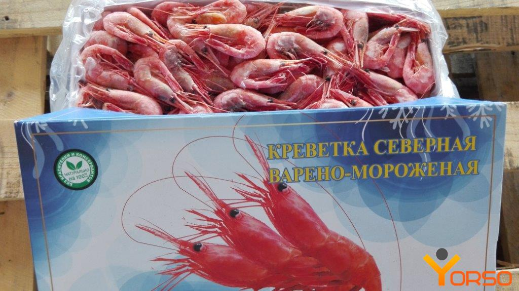 Shrimp VM North, a 50-70pcs/kg, 1/5