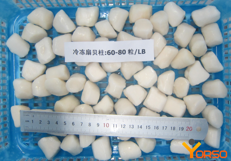 Scallop Chinese, 60-80/lb