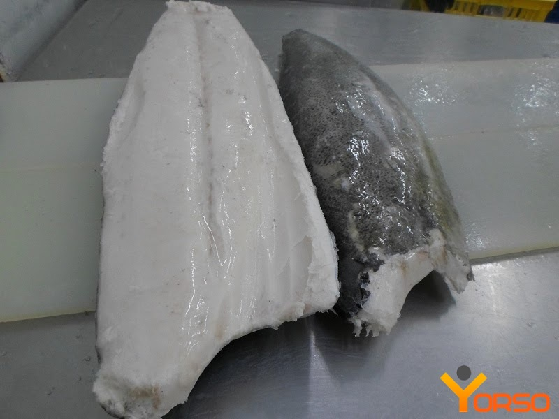 Oilfish (Escolar) fillet, 3-6, 6+