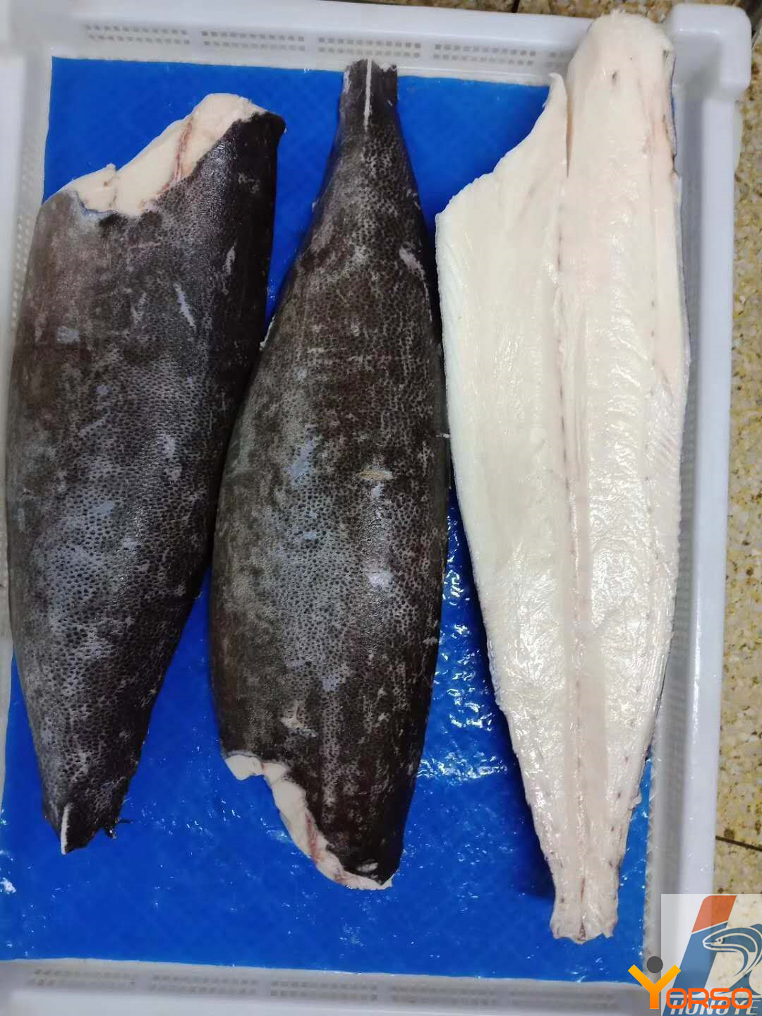 Oil fish (Escolar) fillet, 4-6, 6+